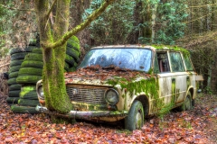 HDR high dynamic range trash urbex lost in the woods decay lada