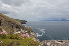 peninsula dingle ierland eire ireland ring of kerry nature natuur landschap landscape paysage